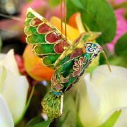 Hanging Hummingbird Wings Down