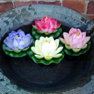 Floating Lotus